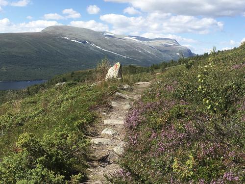 16. august var det tur etter Stølsruta frå Nøsen til Jaslangen
