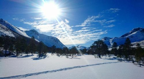 Skitur til Forfjorddalen søndag