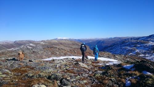 Topppunkt (1381) på vei ned til Flåm. Nydelig utsikt og vi skimter Hurrungane på en flott dag.