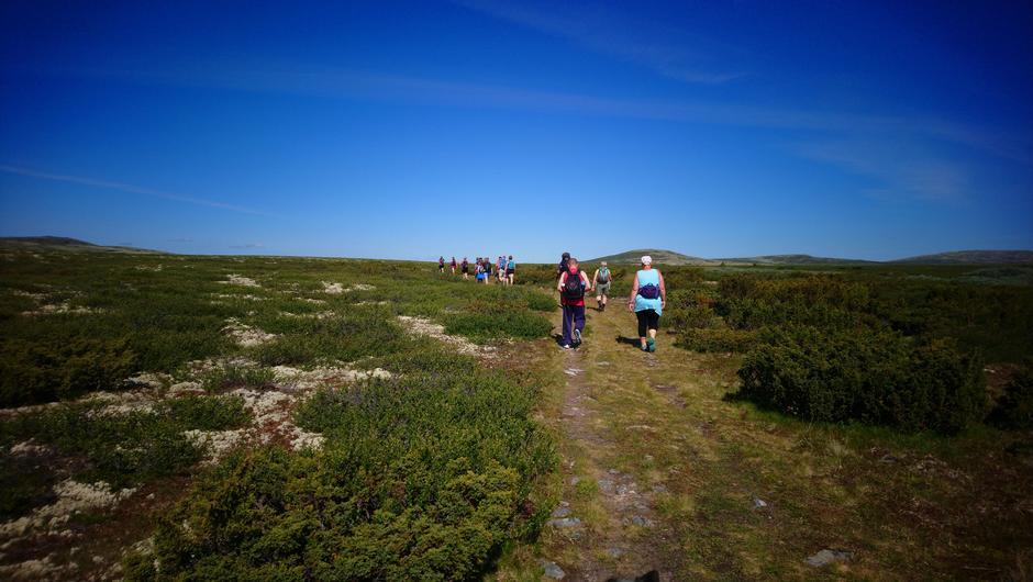 Like etter starten fra Saubua, mot Kiststeinen. Svælhøgda midt imot.