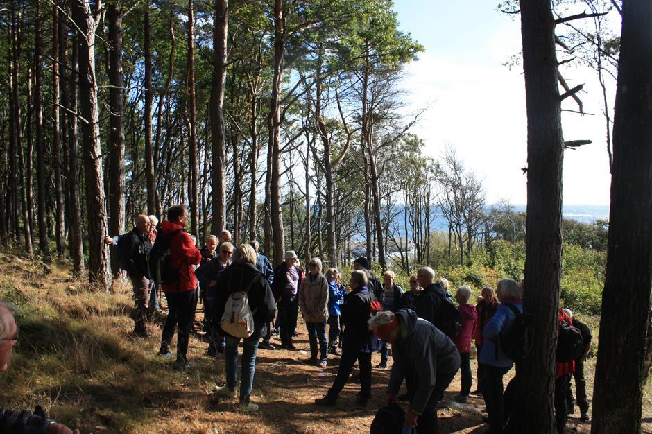Turleder Kåre Mogstad orienterer under trærne.