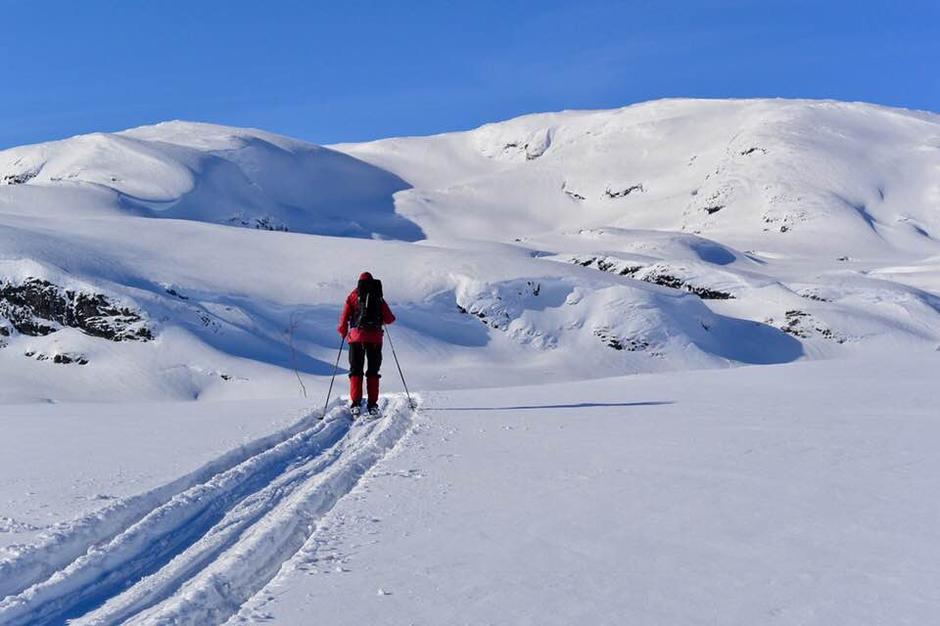 Masse snø og fine forhold i fjellet. Her fra turen mellom Haukeliseter og Holmavatn