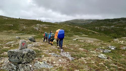 Fjellsafari i Vindeggen-Brattefjell