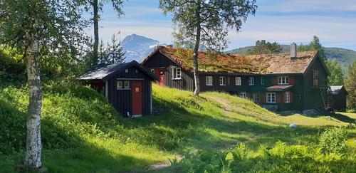 Uke 29. Forholdene i fjellet i Trollheimen og Sylan