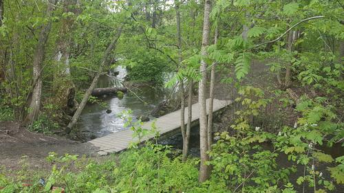 Hukenbekken ved utløpet fra Hogstadvannet
