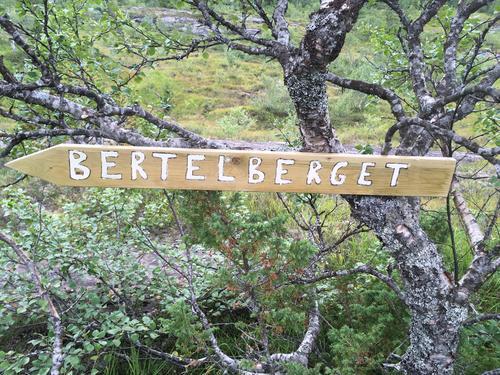 Blåbærtur til Bertelberget