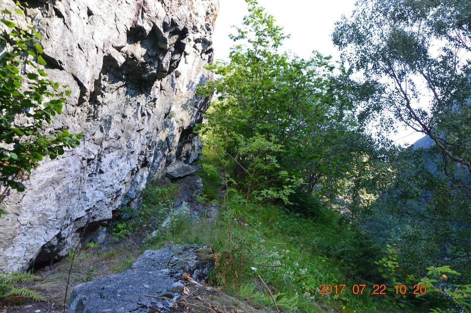 Vi var fire som gjekk den gamle stølsvegen Skåri til Avdalen