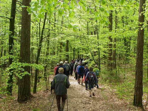 I randsonen av Raet nasjonalpark - en søndagstur med Turgruppa