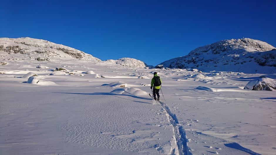Gullingen 5. januar 2017: 20 cm nysnø. Reinsnuten i bakgrunn. Bildet er tatt på 900 moh. Skituren startet på 540 moh. med lik mengde snø.