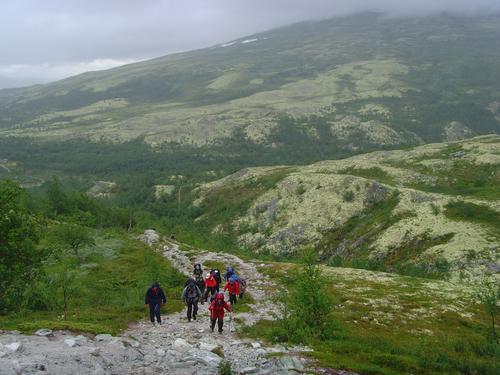 Rondanestien 20114 - Stykkevis og delt