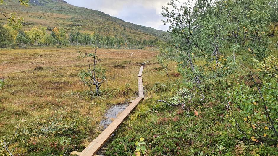 Alt arbeidet som er gjort i Kongsvikdalen vil glede mange turgåere i fremtiden