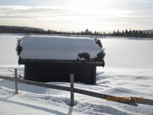 Skitur ved Vollkoia og til Blåmyrkoia 20.02.2019.