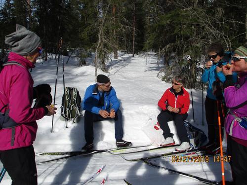 Skitur ved Vollkoia og Blåmyrkoia 27.03.2019