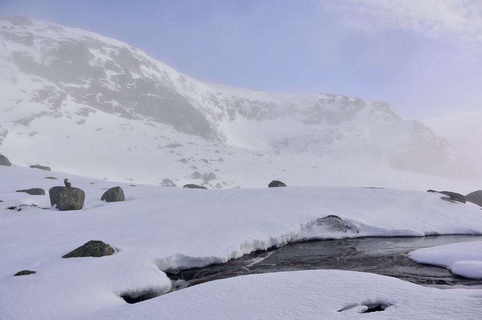 Vårlige forhold og stemning i Tveitebrekka på vei til Tomannsbu. Bildet er tatt den 24 februar .