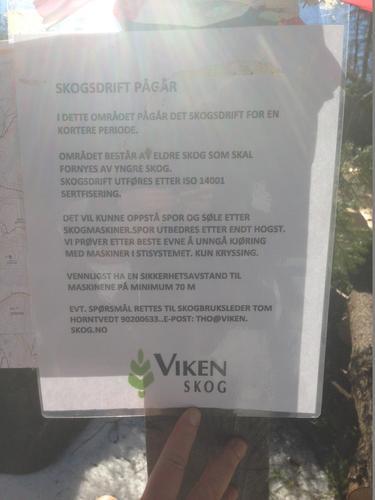 Skogsarbeid ved Merkedammen