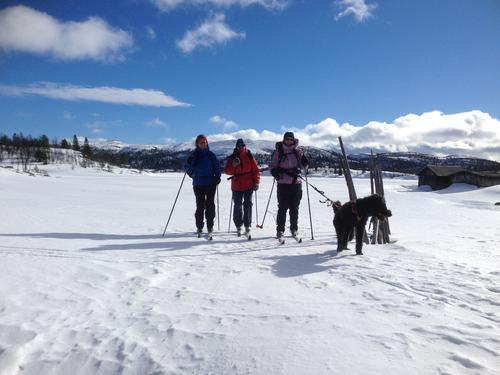 Skitur Haugseterfjellet