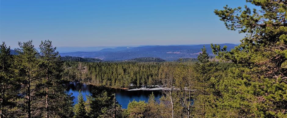 Utsikt til Kobberhaughytta fra Kobberhaugen