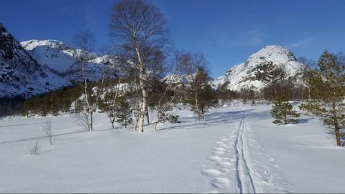UKE 9: Flotte ski og vinterforhold