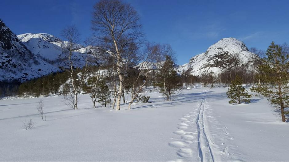 Stien inn til Skåpet 22 februar