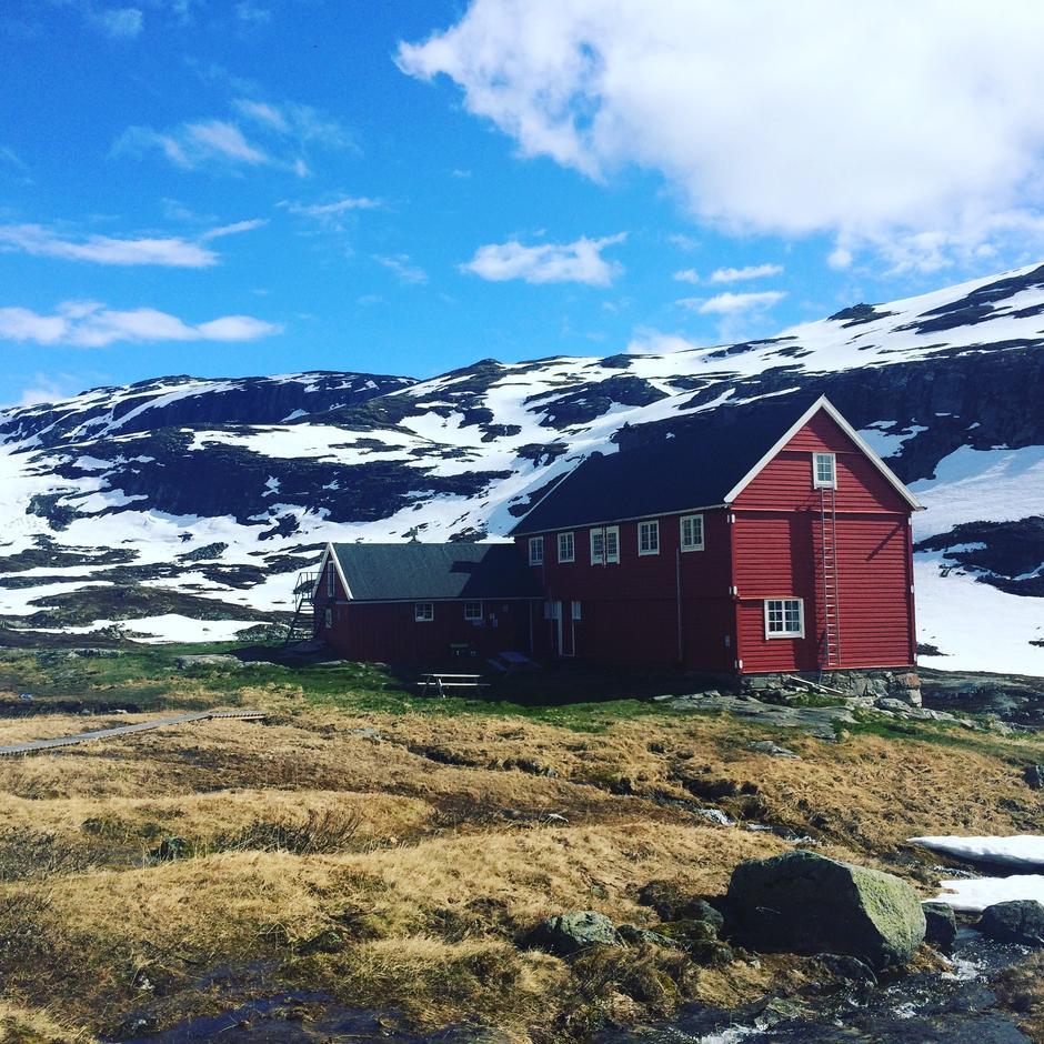 Lørdag 3.6: Stavali - Hardangervidda