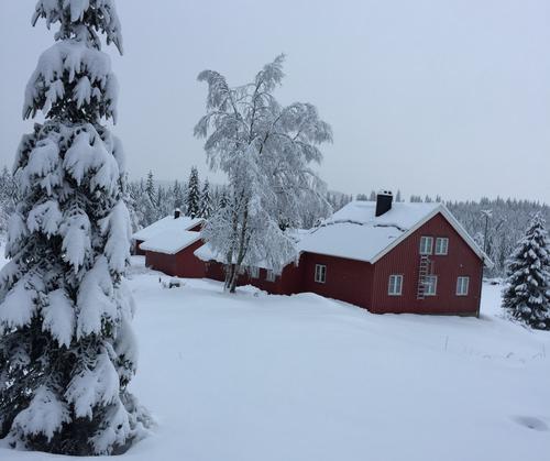 Vinter på Presteseter