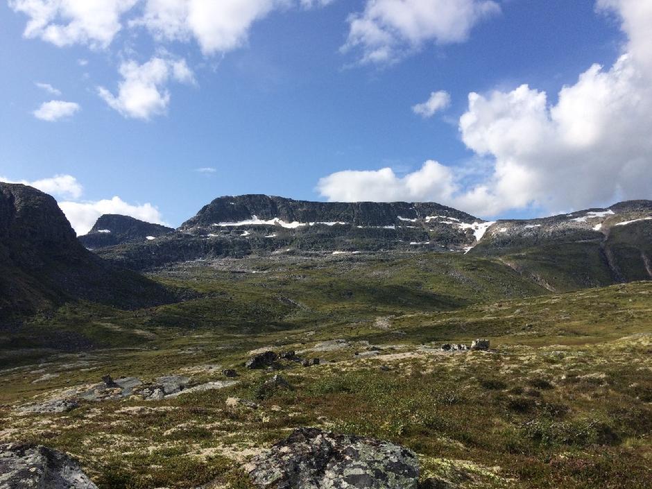 Indre Fauskånebba med Blånebba i bakgrunen