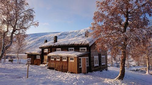 Feir jul eller nyttår på en DNT-hytte