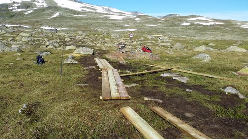Prosjekt: klopper på DNT merket rute til Rasletind