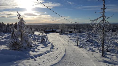 Vintersesongen: STATUS Hedmarksvidda