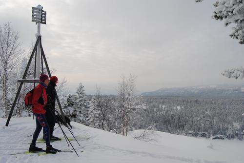 Uke 2: Føremelding - Finnemarka/Skimten og Tverråsen