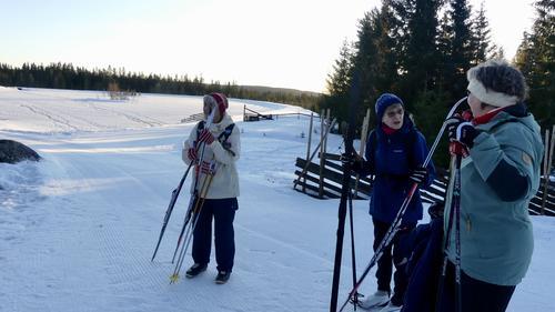 Skitur til Vollkoia/Blåmyrkoia 08.01.2020.