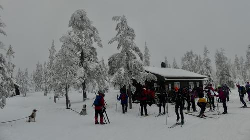 Skitur til Vollkoia/Blåmyrkoia 14.02.2018