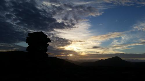 Blåane i solnedgangen