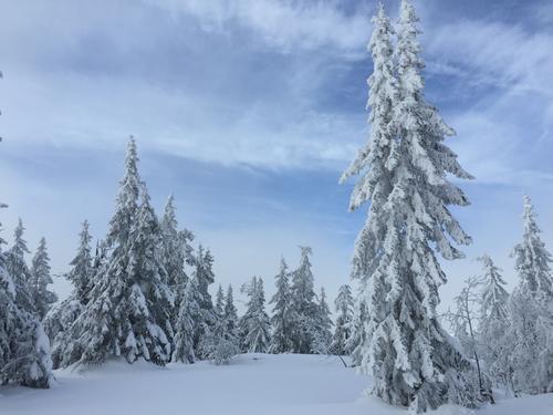 Snørikt og vakkert på Nordåsen.