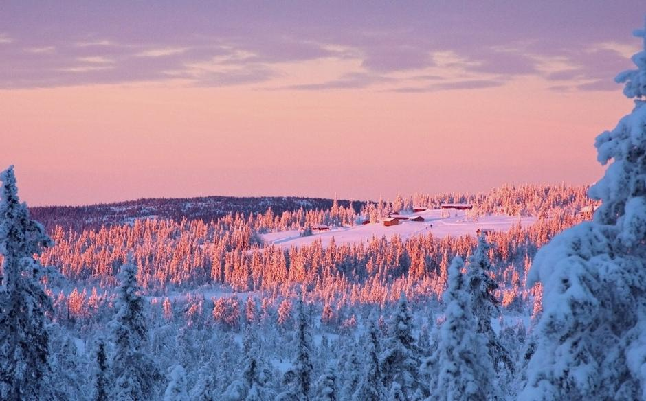 Gå fra Gåsbu til Målia for en deilig tur på Hedmarksvidda.