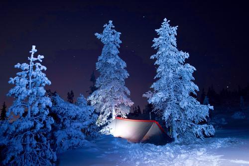 Første vinternatt i naturen. Bymarka i Trondheim i februar.