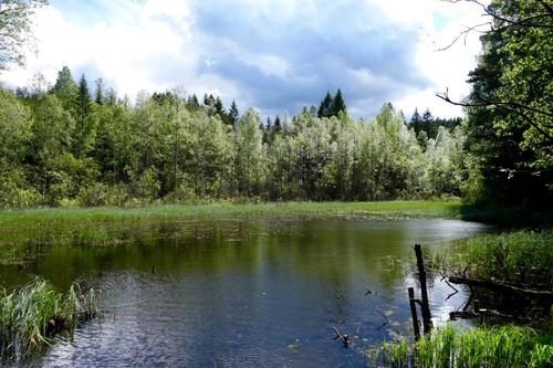 Lukedammen - Gjelleråsmarka