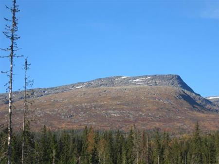 Topptur på ski til Bomfjellet