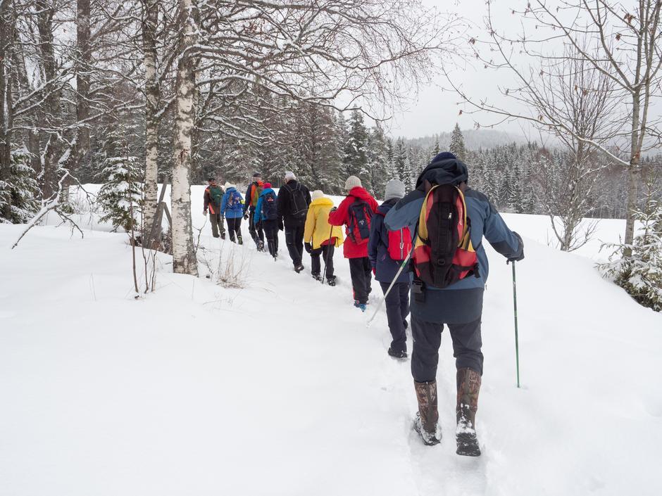 Ennå er det snøbart, men selv om snøen skulle komme, finner vi  stier å gå på.