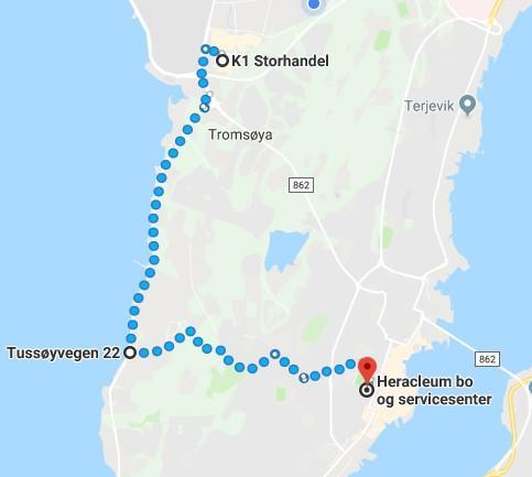 K1  til Heracleum