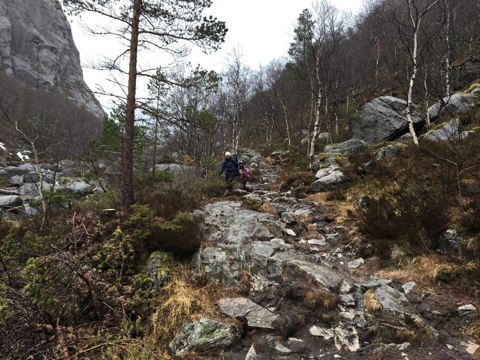 Stien inn til Skåpet 20. april