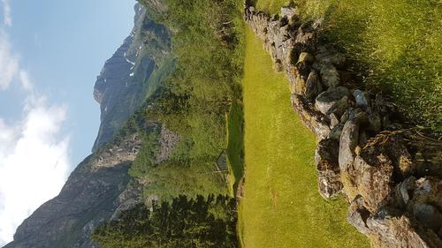 Osaflorane i Norddalen