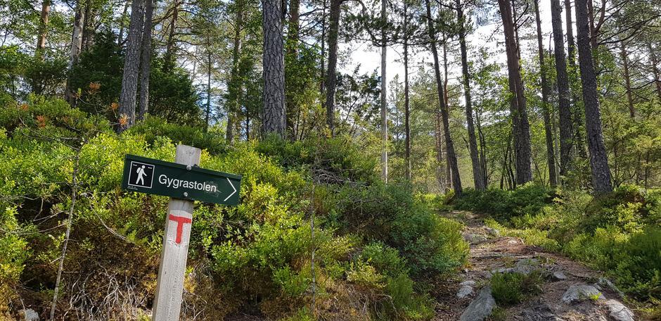 God merking hele veien. Første delen av turen går i skogsterreng.