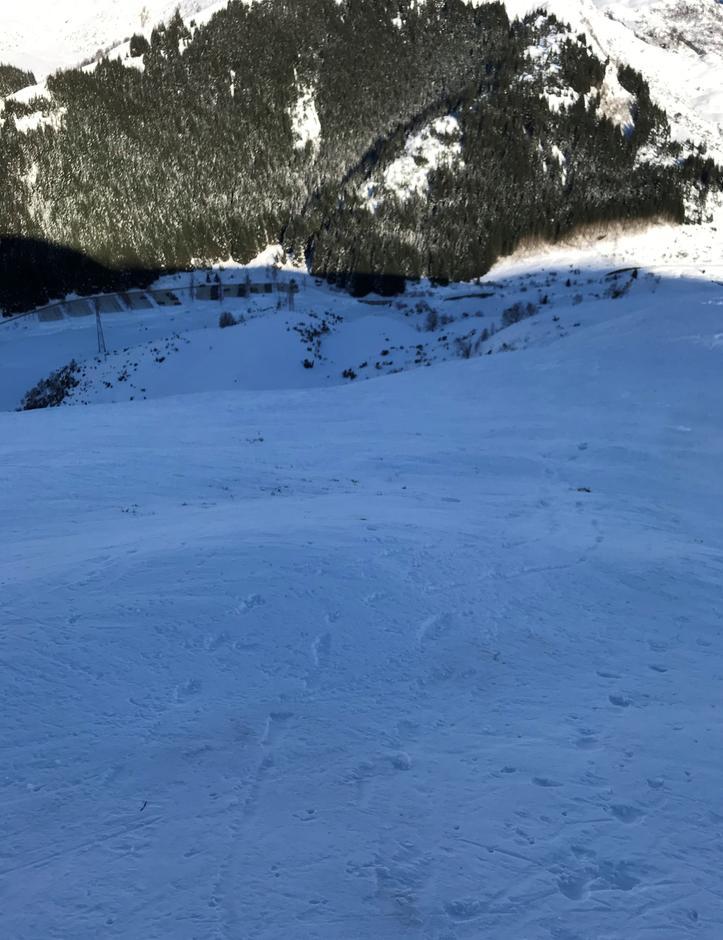 Tirsdag 9.2: Litt for bratt og hardt for undertegnede. Av med ski og på med brodder siste del av Mjelkehaugen. Følte meg som bikkja i bakken. Beklager spor; dere slalomkjørere.