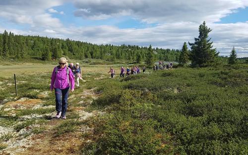 KVELDSTUR LANGS SKODALSÅA KULTURSTI, 6. JUNI 2018