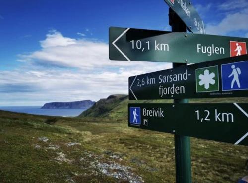 Sørøya på langs 2020