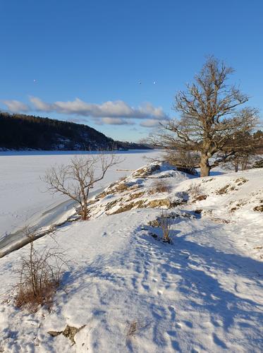 Stemningsfullt på Breivoll Gård onsdag 3. februar 2021.