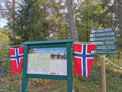 Toppene på Mjøndalsskauen er de nye turmåla!