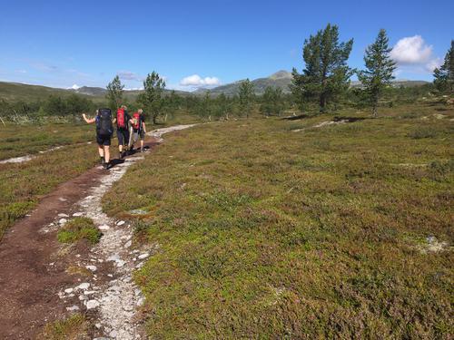 Mellom Valdalen og Svukuriset