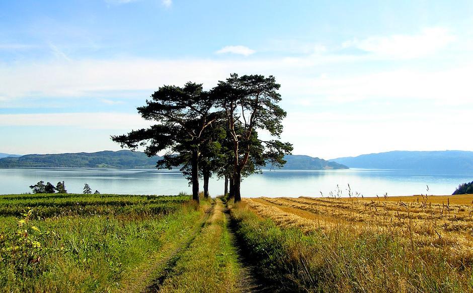 Følger du kulturstien på Inderøy, kan du ta en avstikker og følge alleen fra Trondheimsfjorden opp til Rostad gård.